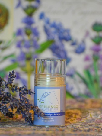 Lavender Bug Balm at Steed and Company Lavender