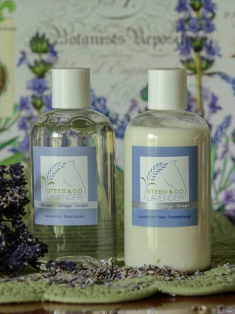 Lavender Shampoo and Conditioner at Steed and Company Lavender