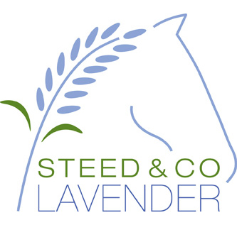 Steed and Company Logo